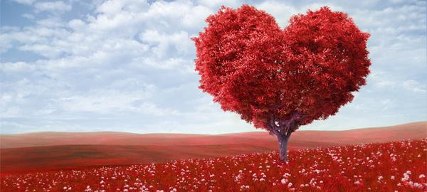 Las mejores propuestas para San Valentín 2017